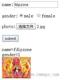 php+html5使用FormData对象提交表单及上传图片的方法
